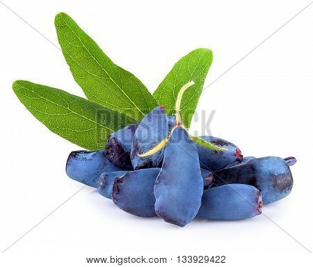 Fresh honeysuckle blue berry fruits with leaf isolated on white background. Honeysuckle woodbine lonicera closeup
