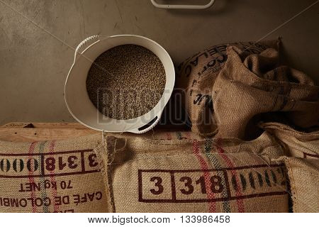 Raw Green Coffee Beans From White Plastic Basket, Above Cotton Bags On Europalet In Warehouse. New I