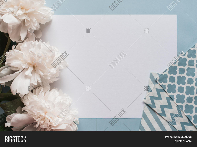 Gogreous White Peonies Flowers Image Photo Bigstock