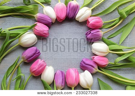 Circle Formed By White, Purple And Pink Tulips On Sliver Gray Wood