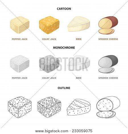 Brynza, Smoked, Colby Jack, Pepper Jack.different Types Of Cheese Set Collection Icons In Cartoon, O
