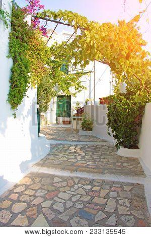 Greek Street With A Canopy. Beautiful Greek Courtyard.