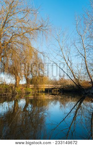 Reflections On Lagoon Park Of Pateira De Fermentelos,portugal.