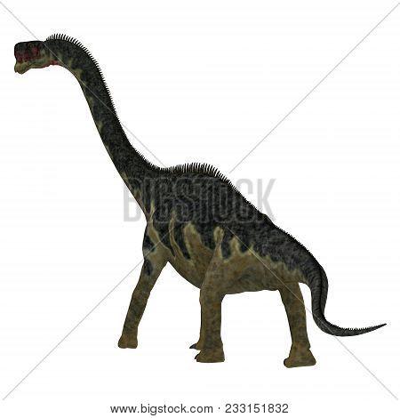 Europasaurus Dinosaur Tail 3d Illustration - Europasaurus Was A Sauropod Herbivorous Dinosaur That L
