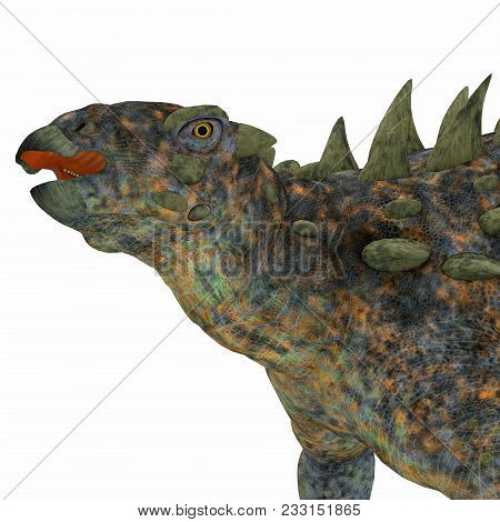 Polacanthus Dinosaur Head 3d Illustration - Polacanthus Was An Armored Herbivorous Dinosaur That Liv