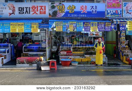 Jagalchi Fish Market, Busan City Korea 3 November 2017 :jagalchi Fish Market Is A Representative Fis