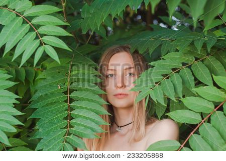 Portrait Of Beautiful Young Woman In Green Leaves, Blonde Pretty Lad