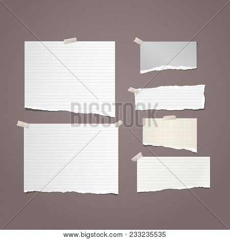 Pieces Of Torn White Lined And Squared Note, Notebook Paper Strips For Text Stuck With Sticky Tape O