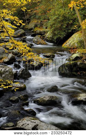 The Middle Prong Of The Little Pigeon River In Tremont Of Great Smoky Mountains National Park In Aut