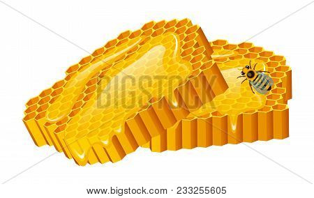 Honey Set, Bee And Hive, Honeycomb, Hive And Apiary. Natural Farm Product. Beekeeping Or Garden, Flo