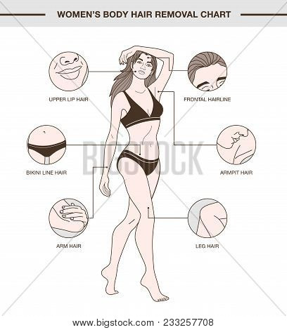 Infographic With European Woman And Body Hair Removal Chart. Illustration With Delicate Outline And