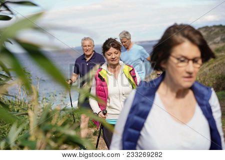 Senior people nordic walking by the atlantic coast