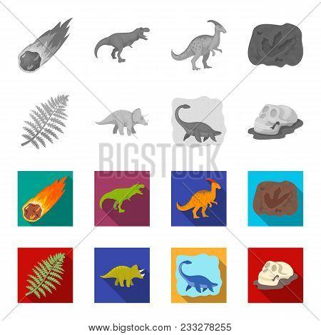Sea Dinosaur, Triceratops, Prehistoric Plant, Human Skull. Dinosaur And Prehistoric Period Set Colle