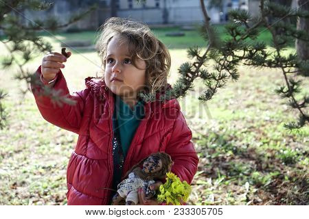 Baby Girl Tears Off A Pine Cone From A Tree
