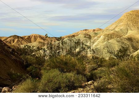 Eroded Hills With Dried Up Mud Creating A Badlands Landscape Surrounded By Desert Shrubs Taken In De