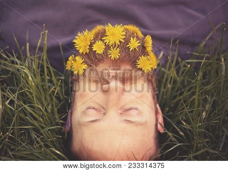 sleeping hipster lying in tall grass with dandelions in his epic beard taking a nap toned with a retro vintage instagram filter