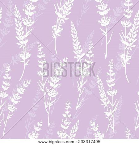 Vector Lavender Flowers Light Purple Silhouettes Seamless Pattern. Beautiful Violet Lavender Retro B