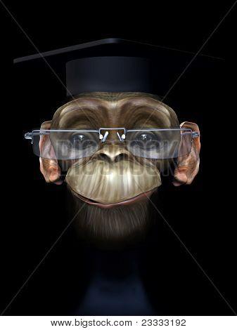 Professor chimp