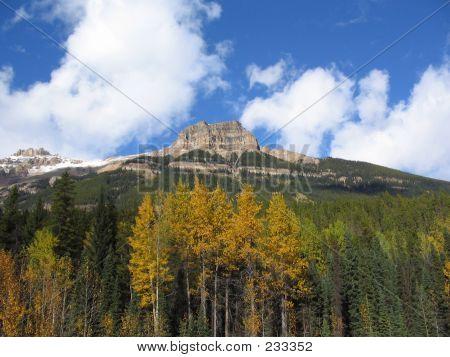 53 Sunwapta Mountain  Jasper National Park Alberta Canada