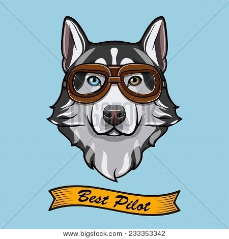 Siberian Husky Dog Pilot. Aviators Glasses. Pilot Glasses. Vector Illustration. Best Pilot Inscripti