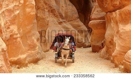 Petra, Jordan - March 13, 2016: A Carriage Through The Siq Canyon Leading To The Treasury (al Khazne