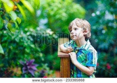 Little Blond Preschool Kid Boy Discovering Flowers And Butterflies At Botanic Garden. Schoolchild In