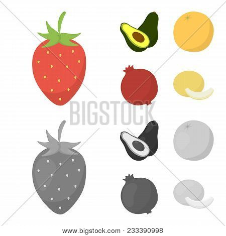 Strawberry, Berry, Avocado, Orange, Pomegranate.fruits Set Collection Icons In Cartoon, Monochrome S