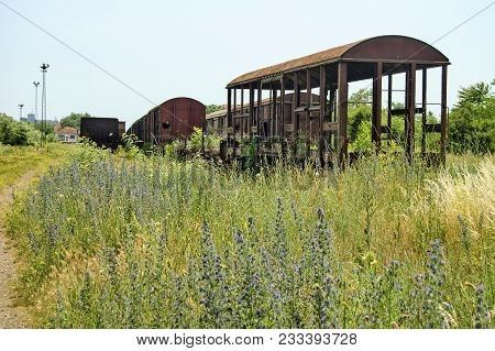 Old Devastated Railway Wagons In The Grass