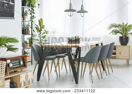 Palm And Dining Table