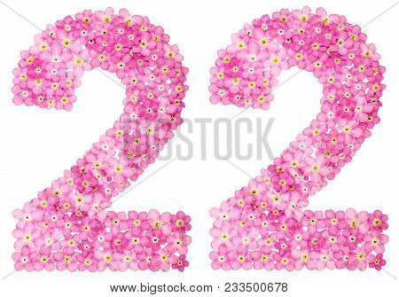 Arabic Numeral 22, Twenty Two, From Pink Forget-me-not Flowers, Isolated On White Background