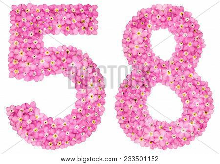 Arabic Numeral 58, Fifty Eight, From Pink Forget-me-not Flowers, Isolated On White Background
