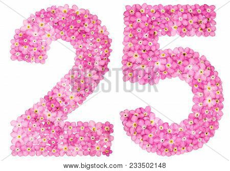 Arabic Numeral 25, Twenty Five, From Pink Forget-me-not Flowers, Isolated On White Background
