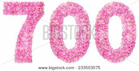 Arabic Numeral 700, Seven Hundred, From Pink Forget-me-not Flowers, Isolated On White Background