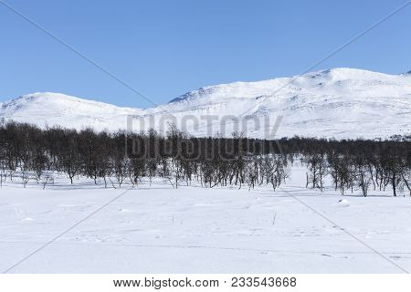 Snowy, Wintry Mountain Landscape. Open White Fields, Forests And The Mountain.