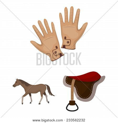 Hippodrome And Horse Cartoon Icons In Set Collection For Design. Horse Racing And Equipment Vector S