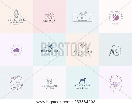 Twelve Abstract Feminine Vector Signs Or Logo Templates Set. Retro Floral Illustration With Classy T