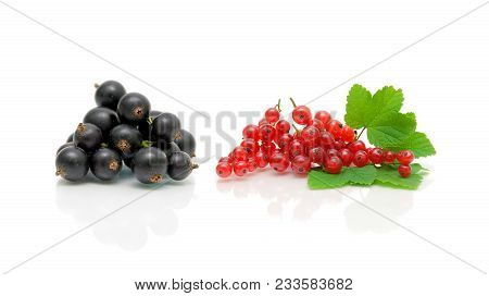 Black And Red Currants On A White Background. Horizontal Photo.