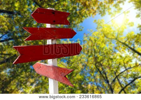Red Wooden Directional Arrow Signs In Green Forest Background