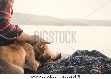 Relaxing Moment Asian Boy And Dog In Nature ,enjoying Time On Holiday Concept ,color Of Vintage Tone