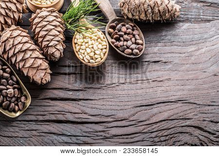 Pine nuts in the spoons and pine nut cone on the wooden table. Organic food.