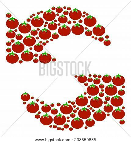 Refresh Collage Of Tomato Vegetables In Different Sizes. Vector Tomato Vegetable Symbols Are Organiz