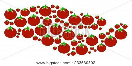 Share Hand Composition Of Tomato Vegetables In Various Sizes. Vector Tomatoes Objects Are Organized