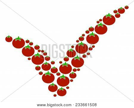 Yes Composition Of Tomatoes In Variable Sizes. Vector Tomato Elements Are Grouped Into Yes Illustrat