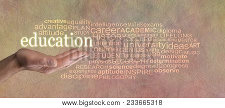 Words Associated With Education Word Cloud - Male Open Hand With The Word Education Floating Above S