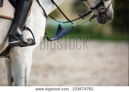 Horseback rider, woman riding a horse -  close-up of the rider's boot with ample copy space