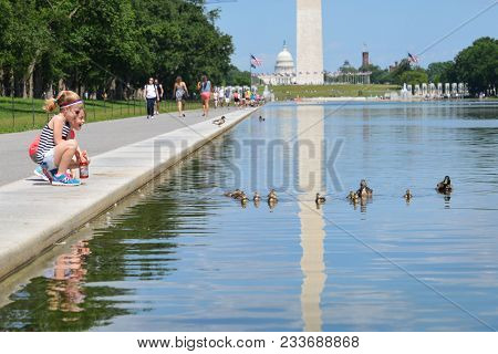 Washington D.C. / United States - June 01 2014: Children cheers the duck family in springtime - National Mall - Washington DC