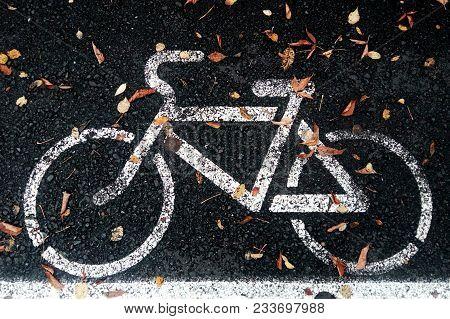 Bicycle Lane Or Path And White Bike Symbol. Bicycle Path And Autumn Fallen Leaf On Lane. Bike Lane O