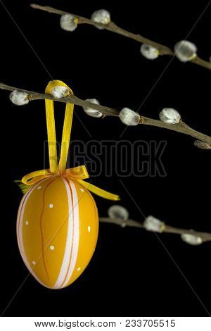 Striped And Dotted Egg Pattern Suspended On A Catkins Branch In Front Of A Black Background.