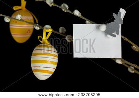 Various Patterned Eggs Suspended On A Catkins Branch In Front Of A Black Background. Message Writing