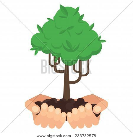 Hands Hold A Green Tree. Environmental Protection, Eco Friendly Concept. Flat Vector Cartoon Illustr
